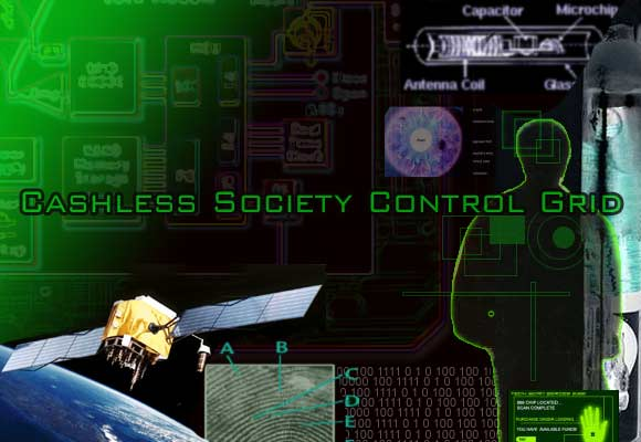 cashless_control_grid
